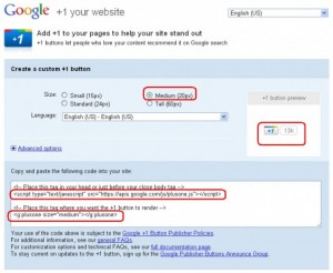 How To Add Google +1 Button To WordPress