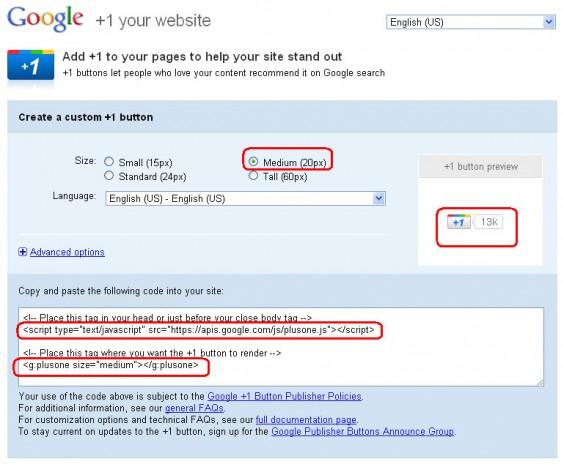 Google +1 Button Customization