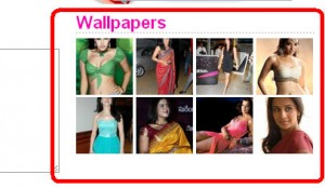 WordPress – How To Show Thumbnail Gallery In Sidebar