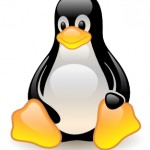Essential Linux Commands
