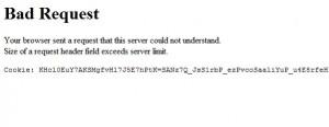 PayPal Error: Bad Request