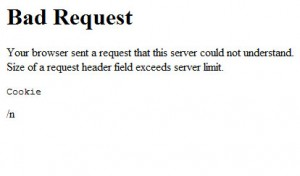 Paypal Error – Bad Request – Your browser sent a request that this server could not understand